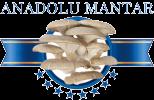 Anadolu Mantar